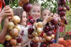 Daylesford's Harvest Festival