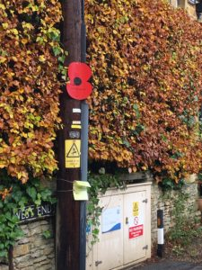 Remembrance Poppy in Kingham for Harvey Biles