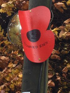 Remembrance Poppy in Kingham For Edward Eden